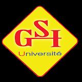 GSI MADAGASCAR