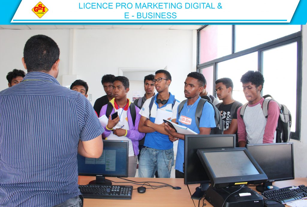 LICENCE PRO MARKETING DIGITAL